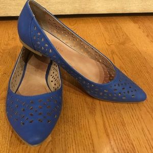 Restricted blue pointed flats
